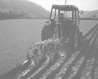 استشارات  زراعية ( عن بعد)