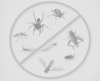 مكافحه حشرات مع الضمان بخصم30%